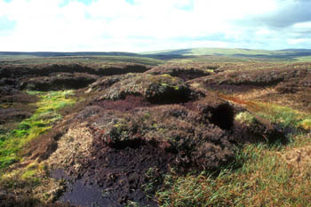 Climate warming could destabilise the carbon stored in northern peatlands