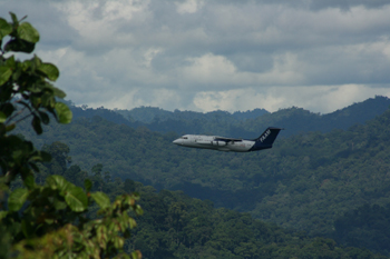 Airborn observations in Borne's Danum Valley, image courtesy of Martin Irwin (University of Manchester)