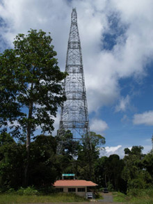 Danum Valley research station 100 metre high tower